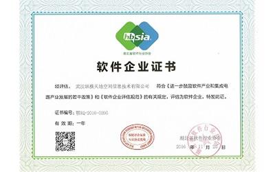 湖北省双软企业