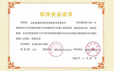 武汉市软件企业