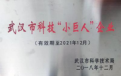 武汉市科技小巨人企业